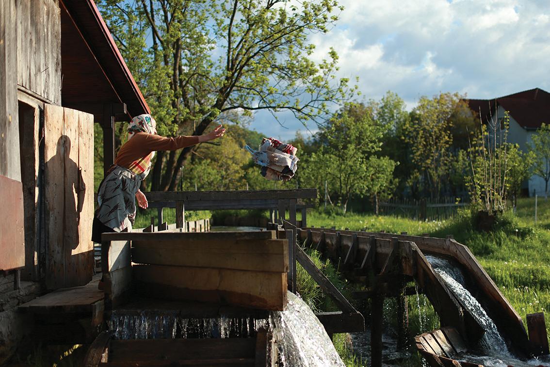 răzvan voiculescu dor de rost Floare arunca covor 01 m