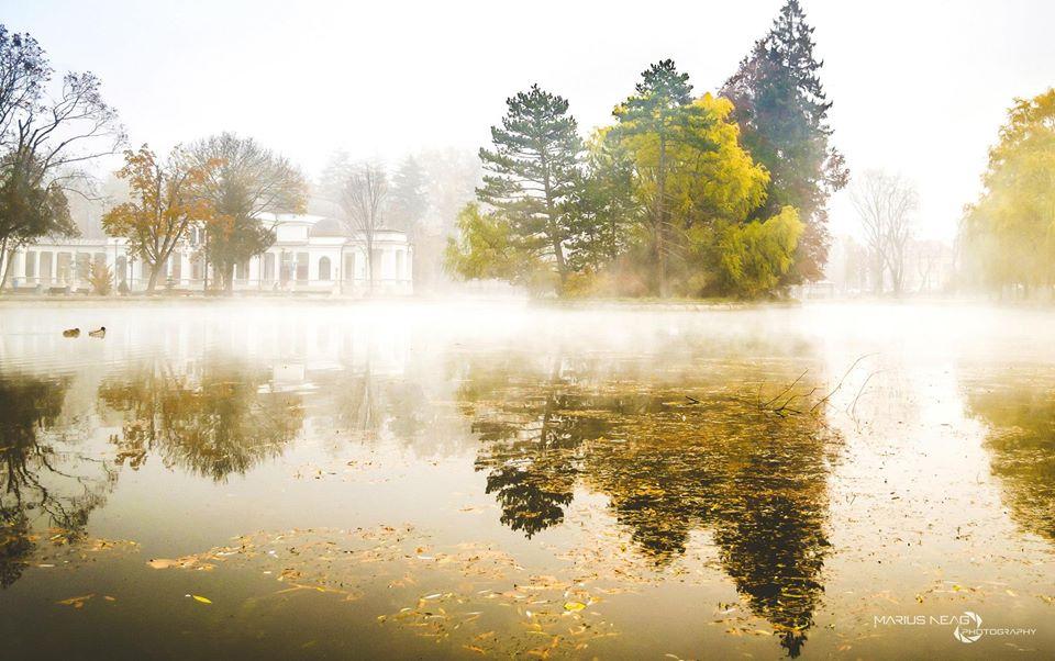 toamna clujană concurs octombrie articole poezii
