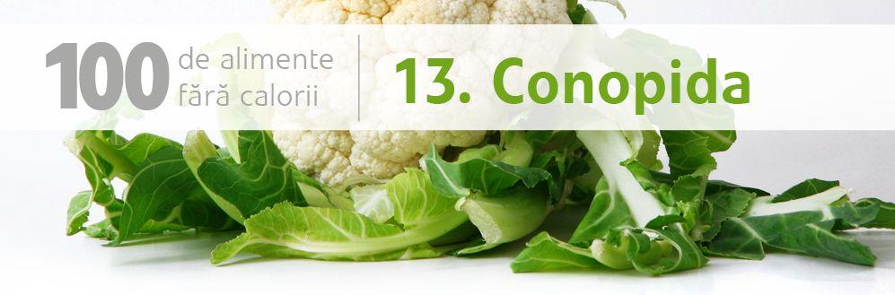 13 conopida_L