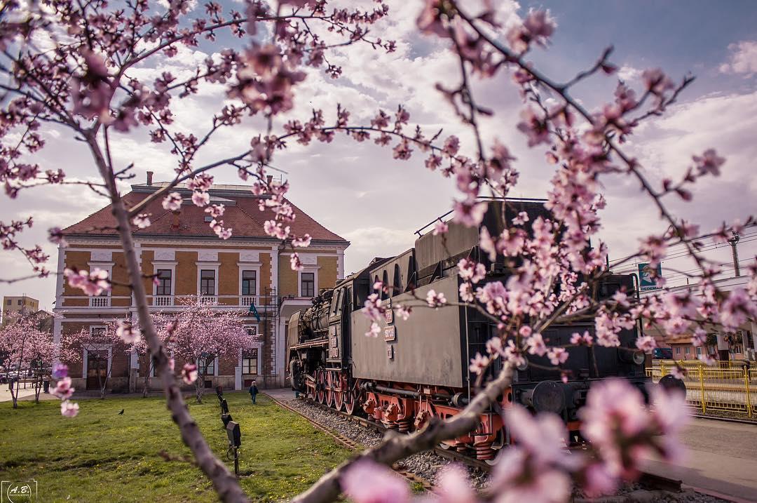 13 fotografii de aprilie (1)