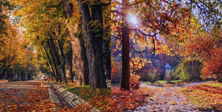 13-fotografii-din-noiembrie-2020