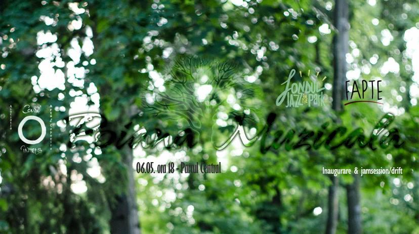 Poiana muzicală - Inagurare & jamsession/drift