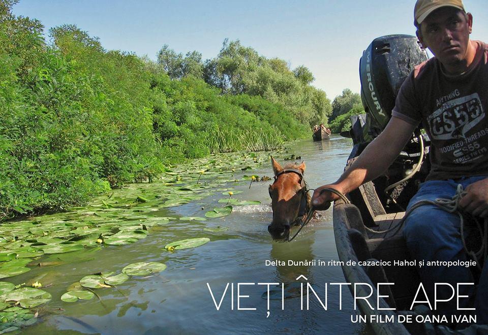 Proiectie documentar delta