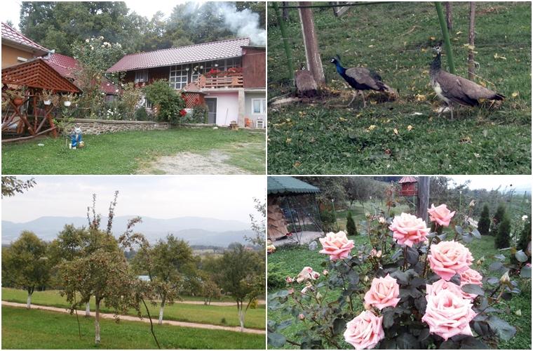 catunul Osoiele, comuna Negreni, judetul Cluj