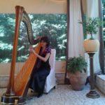 wedding music cluj