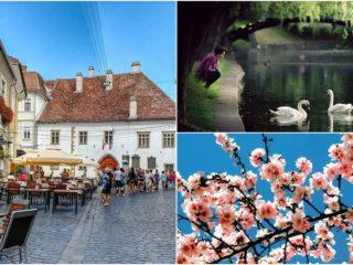 5 instagrameri clujeni pe care să-i urmărești (Varianta 2) | #FotografdeCluj