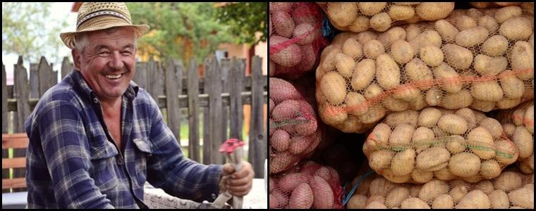 comuna rasca cluj festivalul cartofului