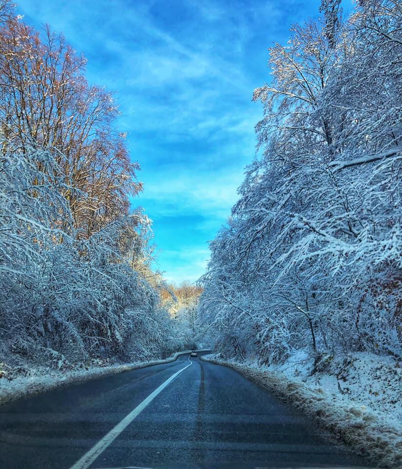 Alex Șuteu prima ninsoare