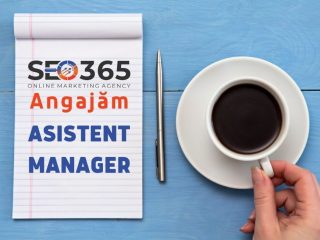 Angajăm Asistent Manager – Full Time – SEO 365