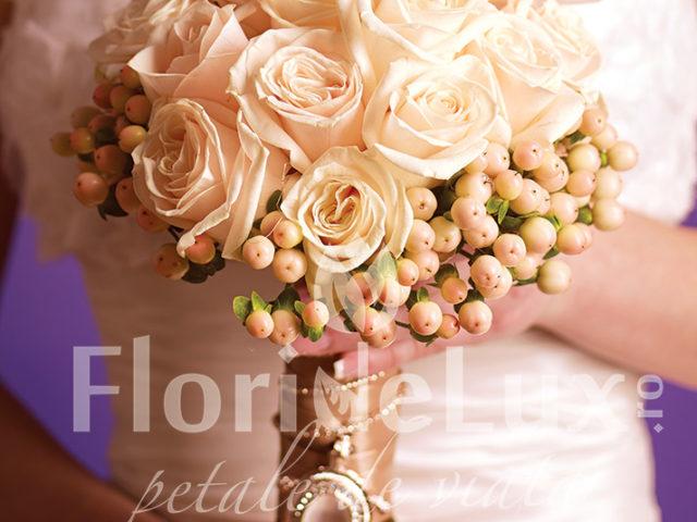 flori de lux cluj