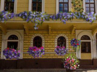 Centrul Verde: clujenii pot adopta jardiniere cu flori și plante pentru a transforma Piața Muzeului ❀