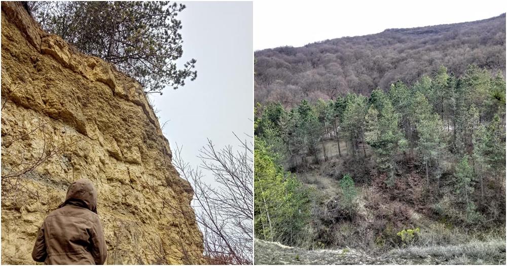 Cheile Baciului: o scurtă escapadă în natură – La doi pași de Cluj