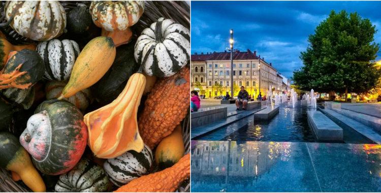 Clujul în 10 fotografii ale lunii Septembrie