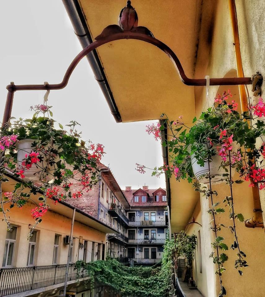 Clujul în 13 fotografii de septembrie mariusmuresan91