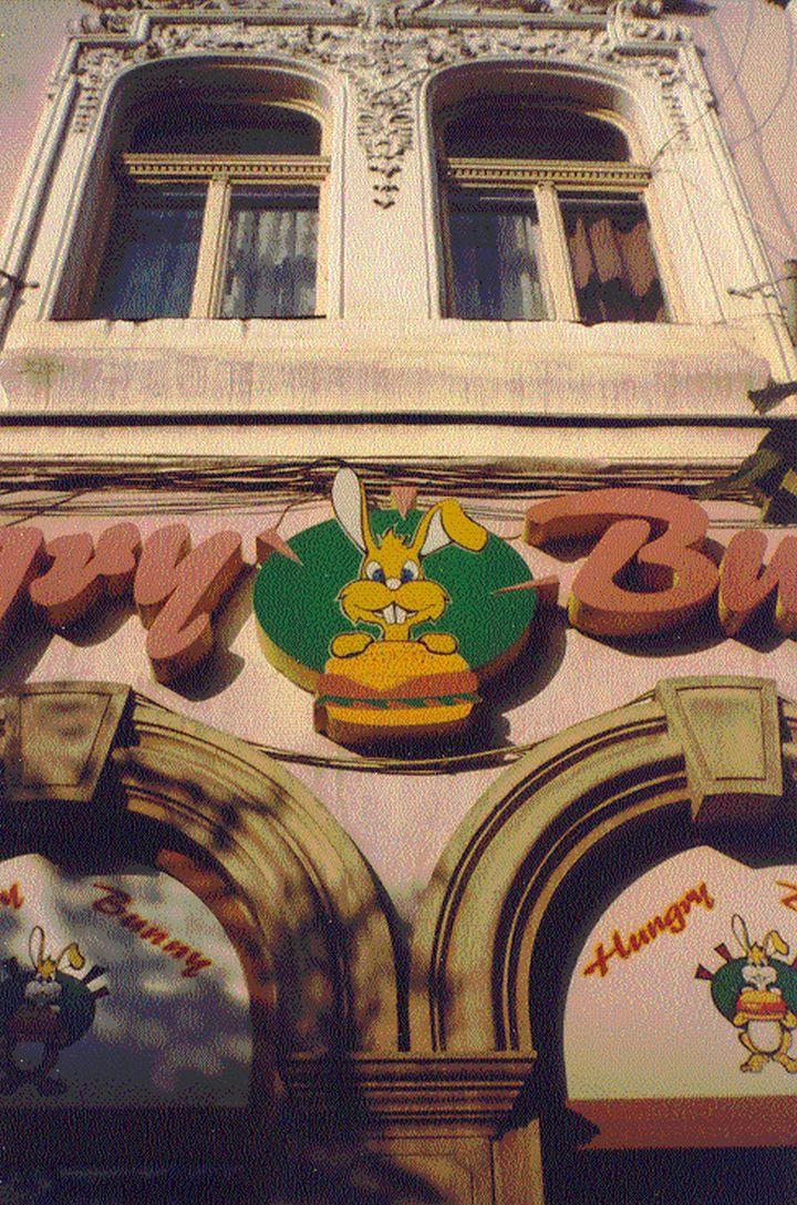 Clujul anilor 2000 hungry bunny1