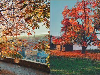 Clujul în 13 fotografii ale lunii octombrie 2019 – Retrospectivă FOTO