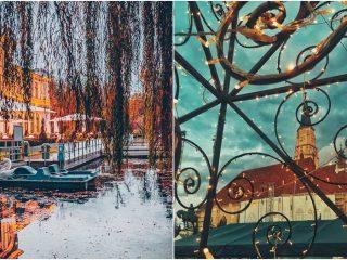 Clujul în 13 fotografii din noiembrie 2019 – Retrospectivă FOTO