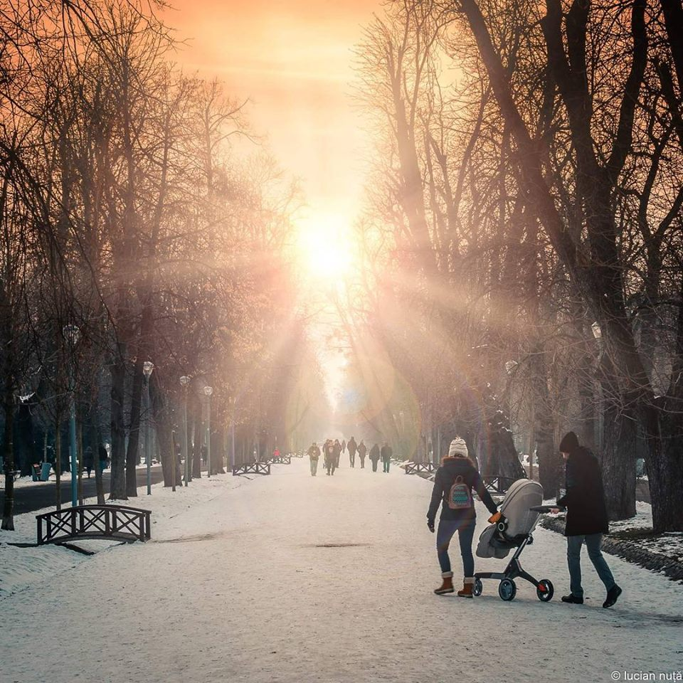 Clujul in 15 fotografii ale lunii februarie (3)