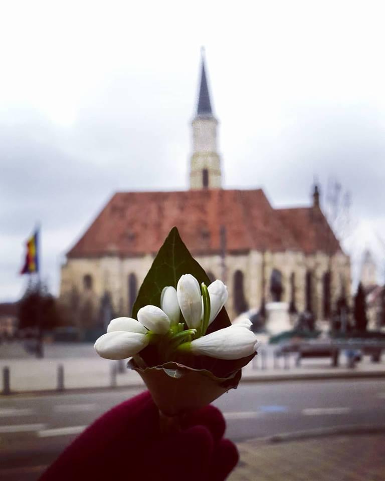 Clujul in 15 fotografii ale lunii februarie (4)