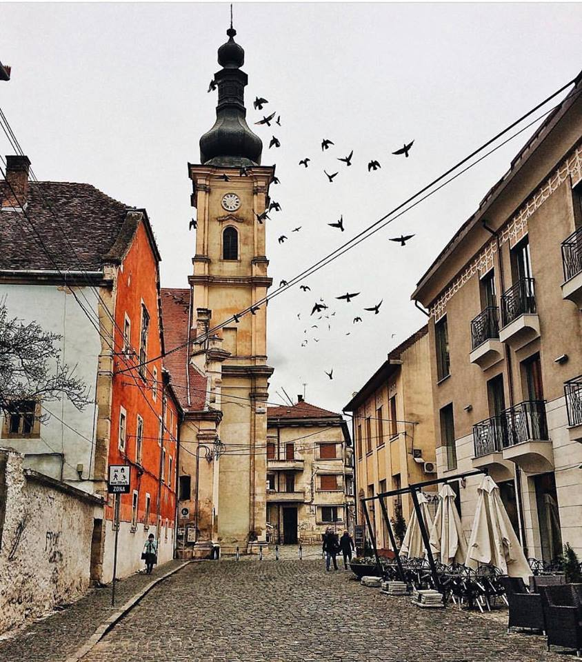 Clujul in 15 fotografii ale lunii februarie (5)