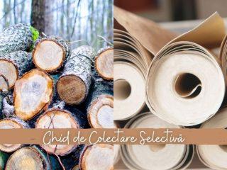 Hârțogăria din viețile noastre | Ghid de Colectare Selectivă: Hârtie & Carton