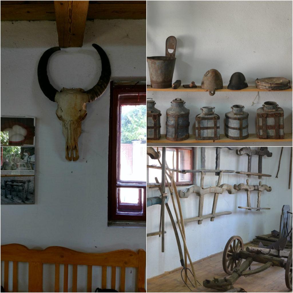 Comorile Clujului - Muzeul Bivolului