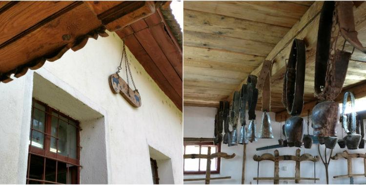 Cluj Muzeul Bivolului