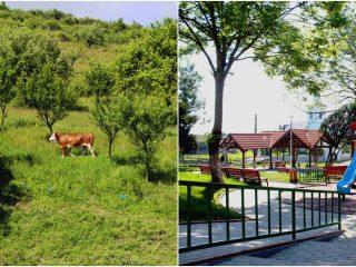 Să descoperim satele Clujului: o zi prin Cuzdrioara