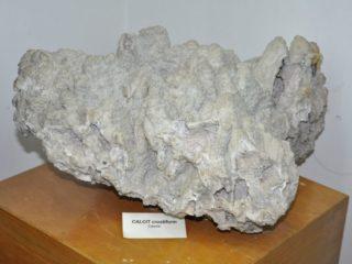 muzeul-de-mineralogie-ubb-8