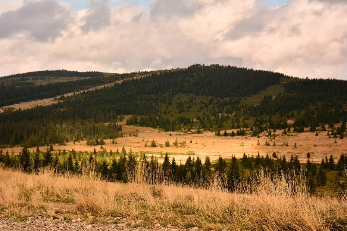 Stațiunea Muntele Băișorii, comuna Băișoara, județul Cluj