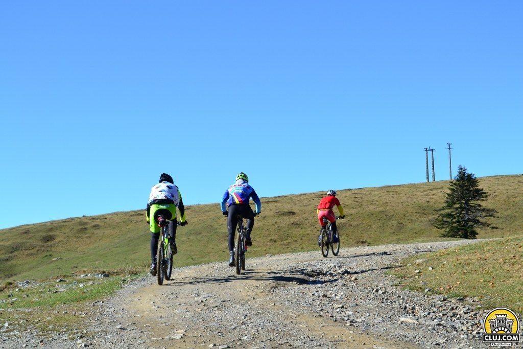 trasee turistice rachitele ciclism