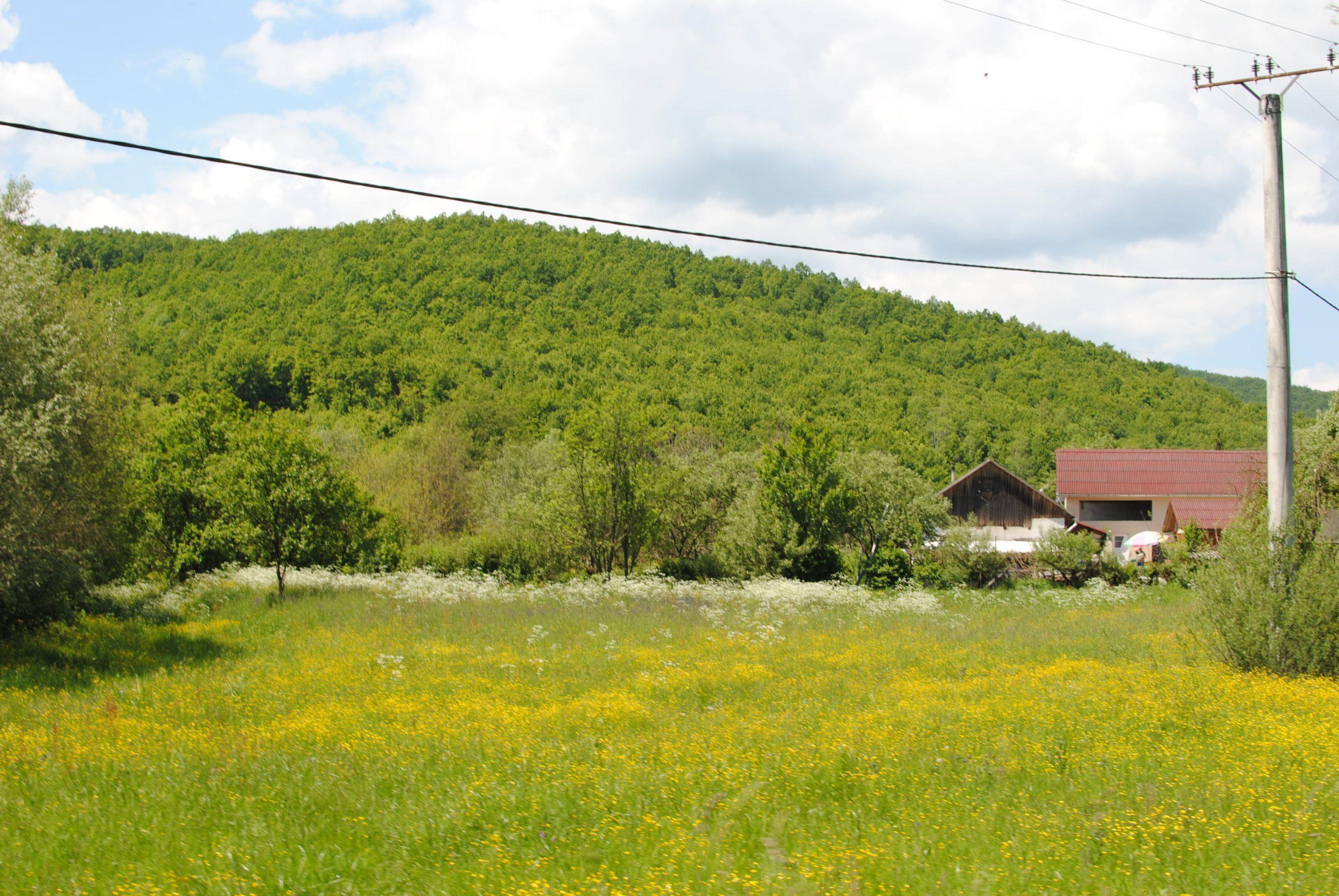 Dealurile din Valea Garboului