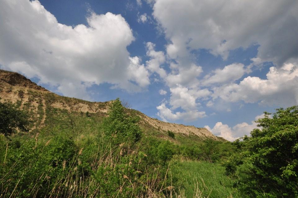 Fânațele Clujului