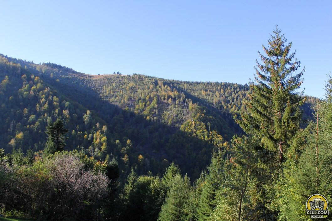 satul Muntele Rece, comuna Măguri Răcătău, județul Cluj