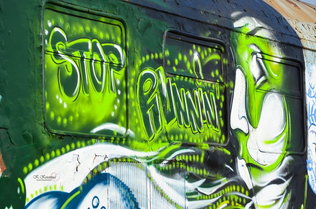 K. Krisztina - Graffiti si Street Art in Cluj (2)