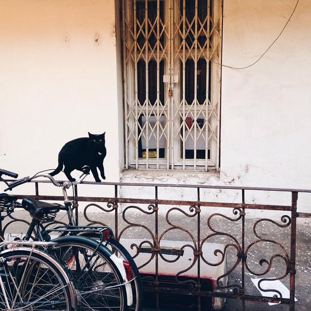 Yolka - cel mai fotogenic bar de pe Instagram