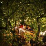 livada restaurant & music lounge city card cluj