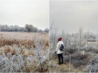 """O plimbare în Parcul Est: am putea să valorificăm """"Stufărișul de la Cluj"""""""
