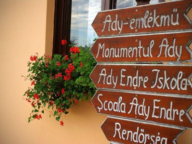 Monumentul si teiul lui Ady Endre, Sancraiu, judetul Cluj