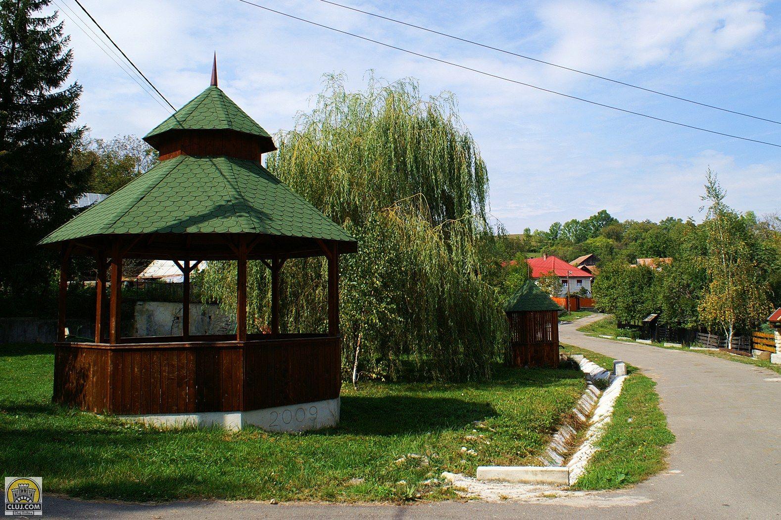 Satul Alunișu, comuna Sancraiu, judetul Cluj