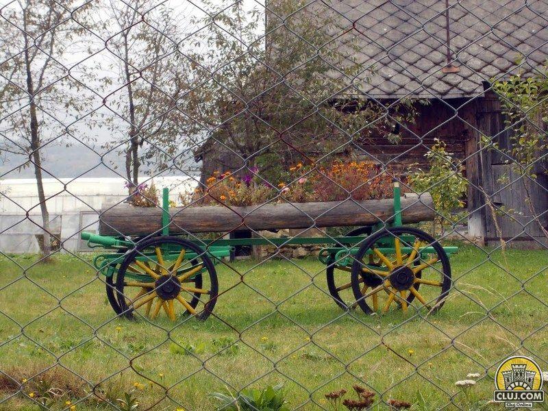 satul cristesti traditii din rasca car cu flori