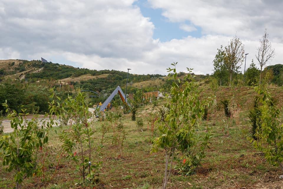 Parcul Padurea Clujenilor 1