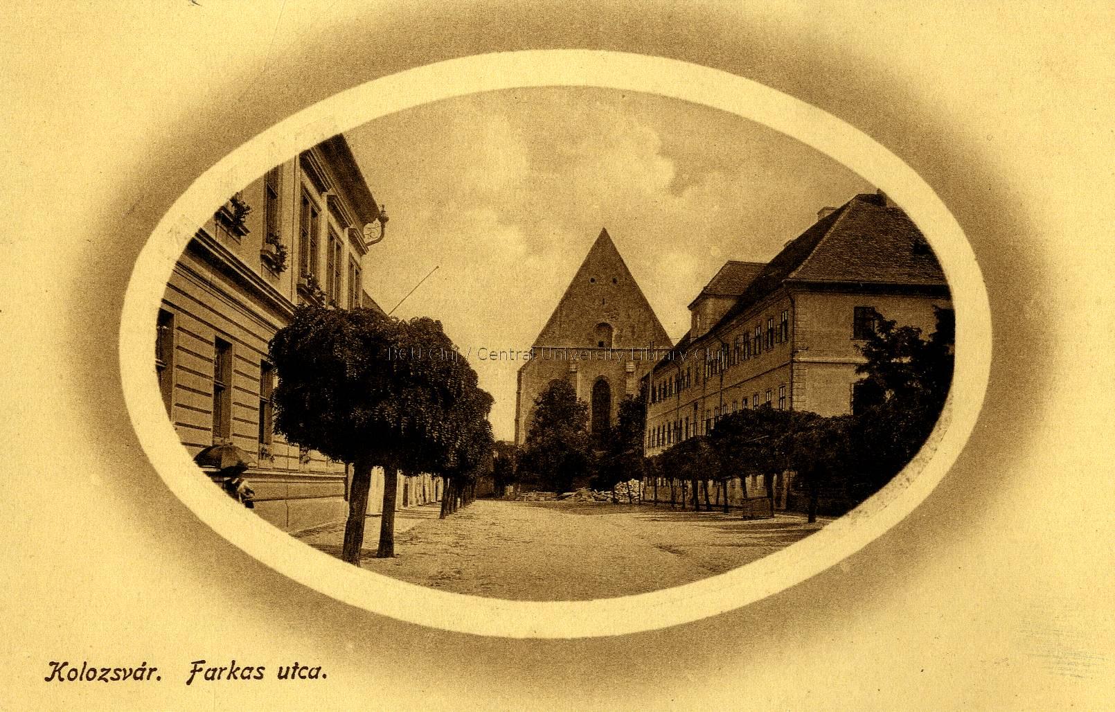 Platea Luporum Cluj (2)