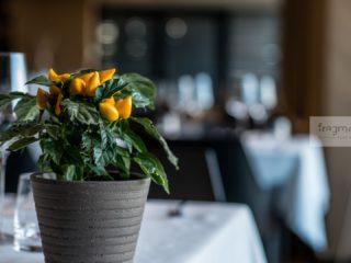 Restaurant Fragment Cluj 2019 (1)