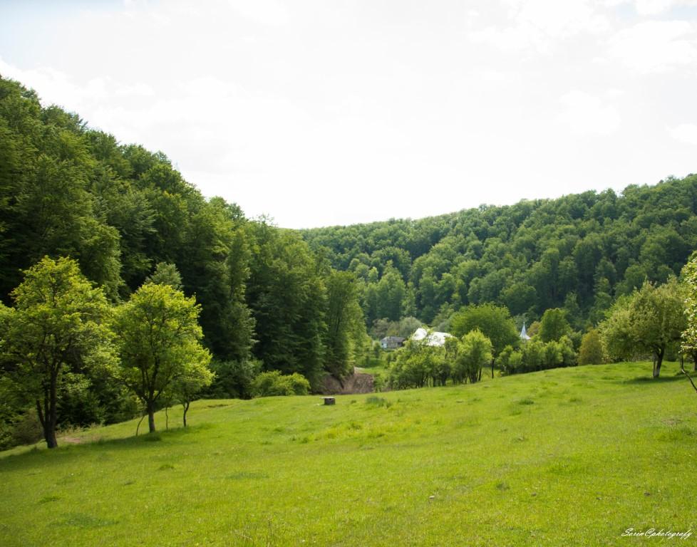 Satul dintre paduri