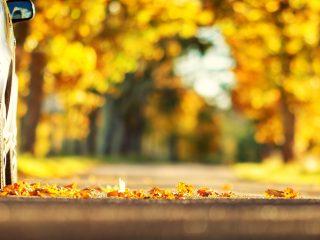 Cum ne pregătim mașina pentru sezonul rece? | Service Auto Rodna
