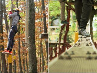 Sezonul rece la Adrenalin Park: experiența noastră și activități provocatoare