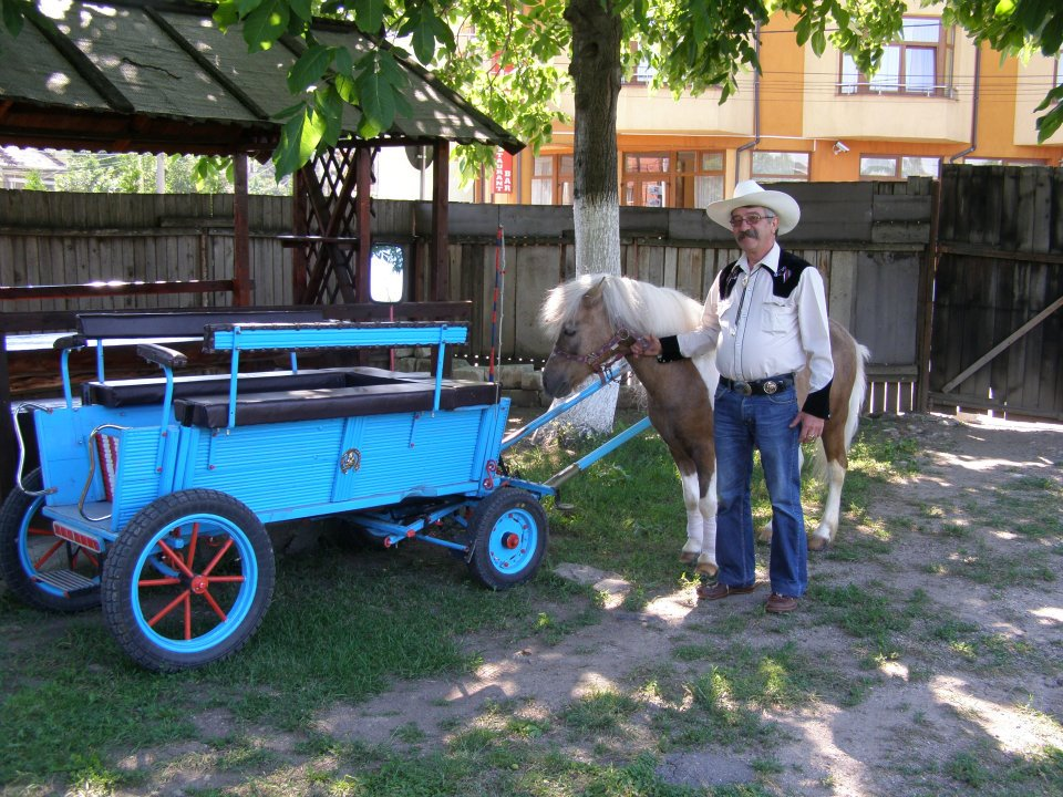 Simbolurile Clujului - poneiul Rocky