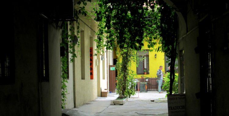 Farmec Str. Napoca, nr. 25