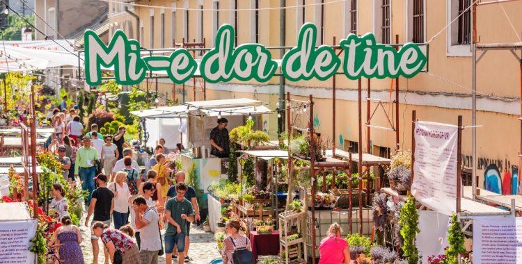 Strada Potaissa - Piața de flori altfel